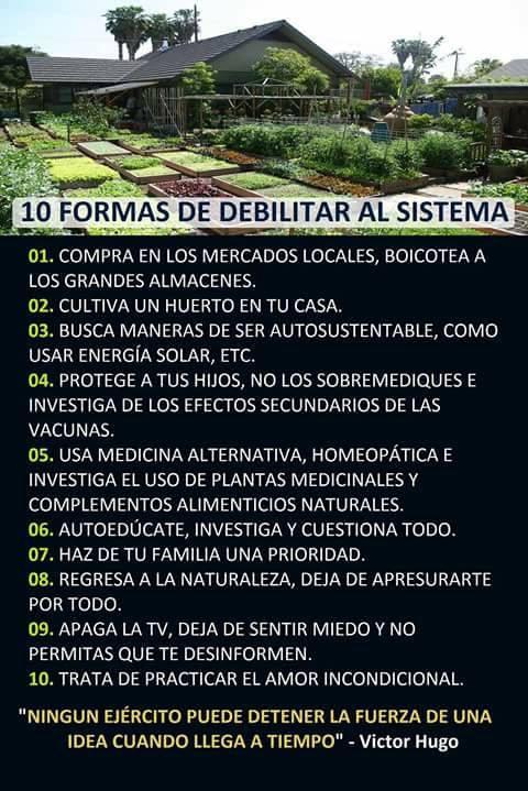 Diez formas de debilitar al sistema
